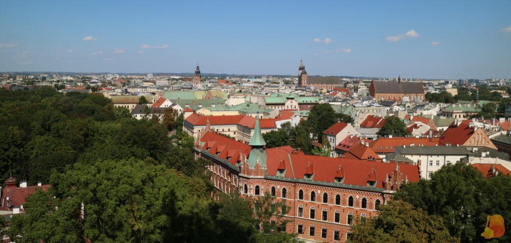 Vistas desde la torre. Destacan en el horizonte las torres de la Basílica y del antiguo ayuntamiento