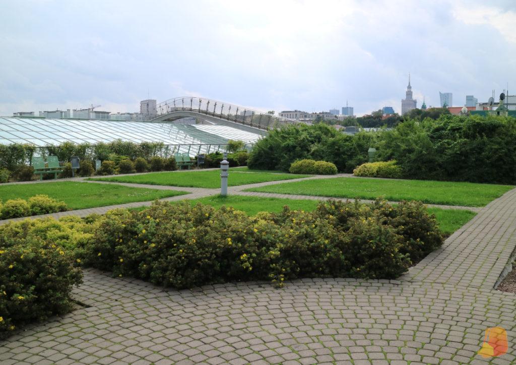 Vistas desde el jardín de la azotea. Al fondo se ve el edificio del Palacio de la Cultura y la Ciencia