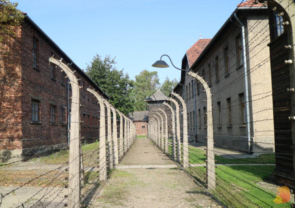 Fotografía sacada entre las dos alambradas que cierran el recinto de Auschwitz
