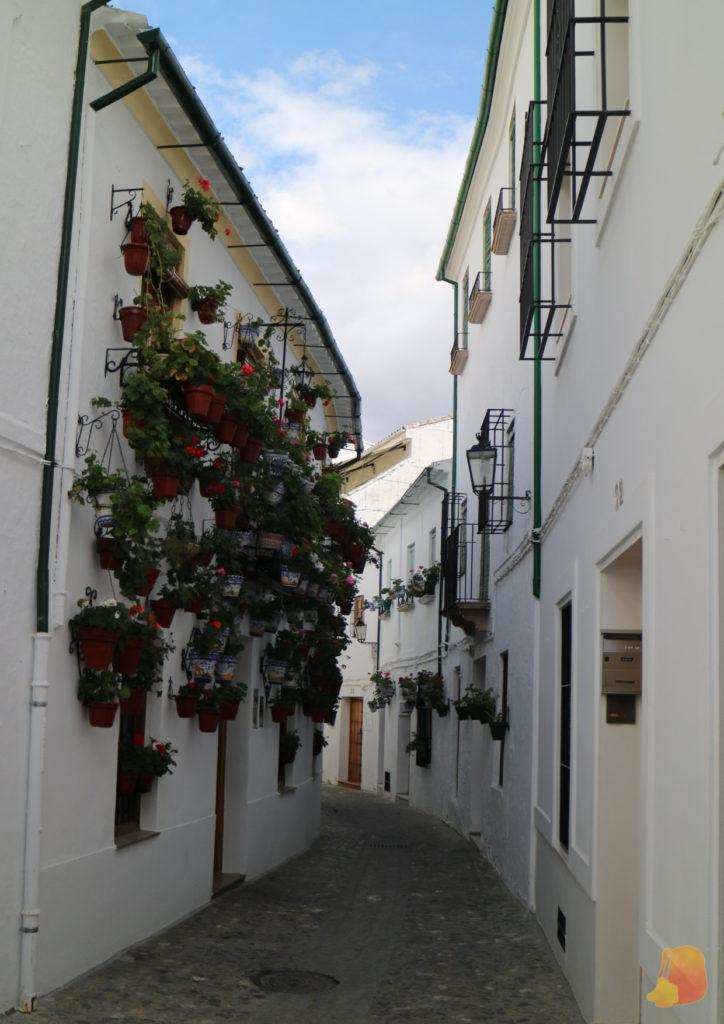 Calle sinuosa y estrecha. Las fachadas blancas de las casas están decoradas con decenas de macetas con flores.
