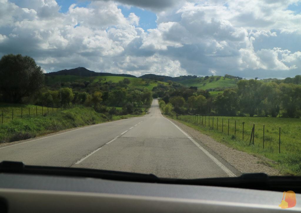 A ambos lados de la carretera se ven prados verdes y al fondo las montañas