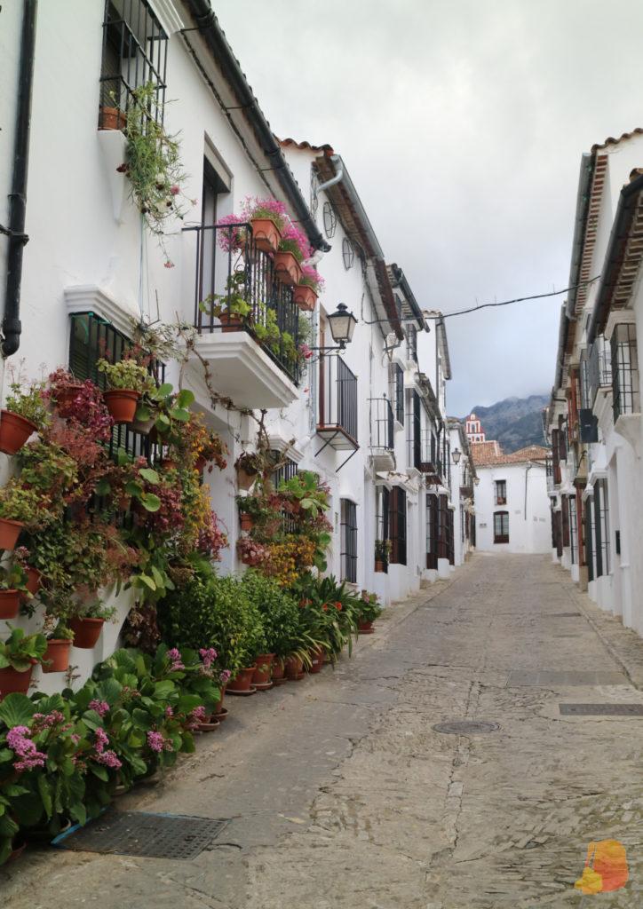 Calle del pueblo. En las fachadas de la izquierda hay un montón de plantas colgadas