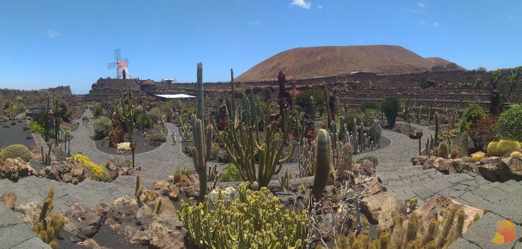 Panoramica del Jardín de Cactus. El centro tiene forma circular y está formado por terrazas que descienden hacia el centro. Se ven las pasarelas y los cactús, así como un molino en la parte alta