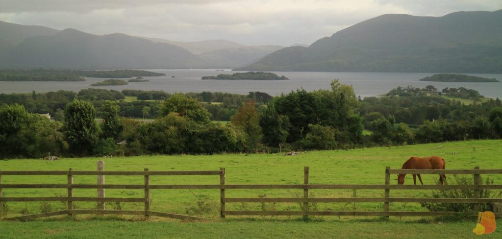 En primer plano el cesped y un caballo pastando. De fondo los Lagos de Killarney y las montañas