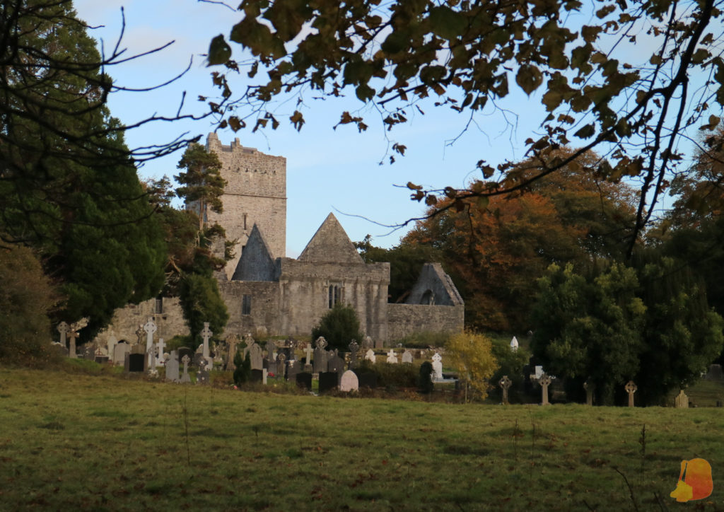 Abadía y cementerio de Muckross