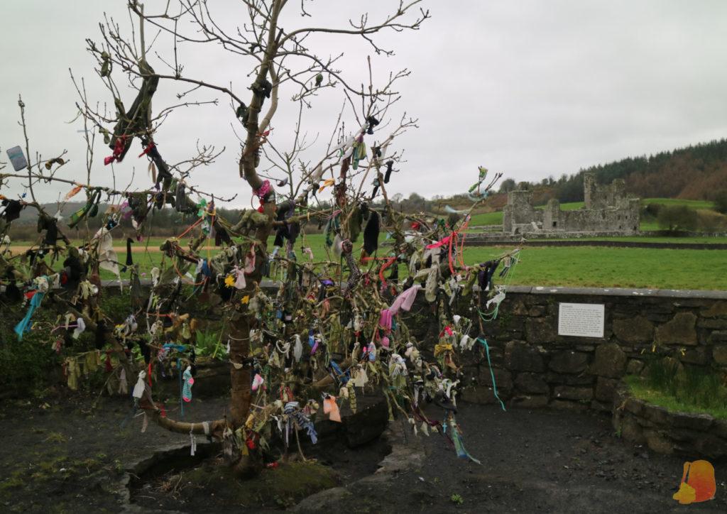Árbol con ofrendas colgando de sus ramas (cintas, calcetines...)